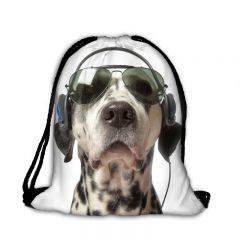 Worek plecak dalmatyńczyk okulary luz 016