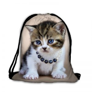 Worek słodki smutny kociak
