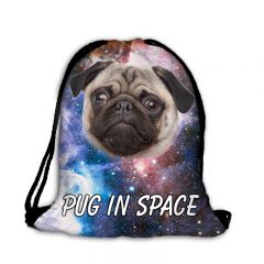 Worek plecak mops w kosmosie 041